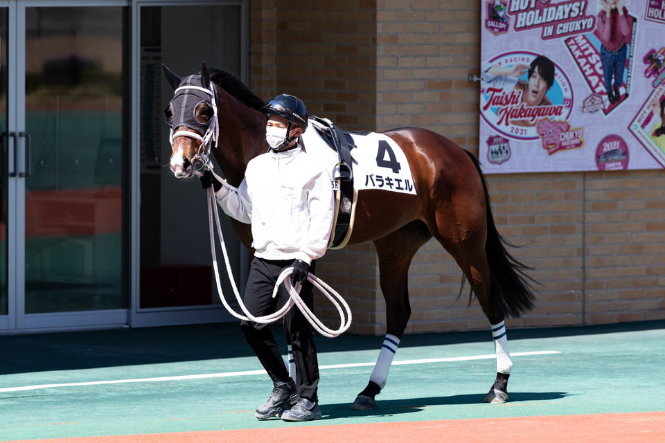 https://www.silkhorseclub.jp/detail_gallery/city/download/6156/1078.jpg